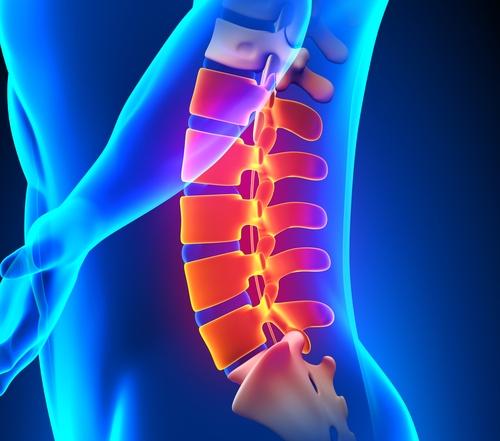 Lumbar Spine Special – $250.00
